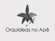 logo orquideas no ape