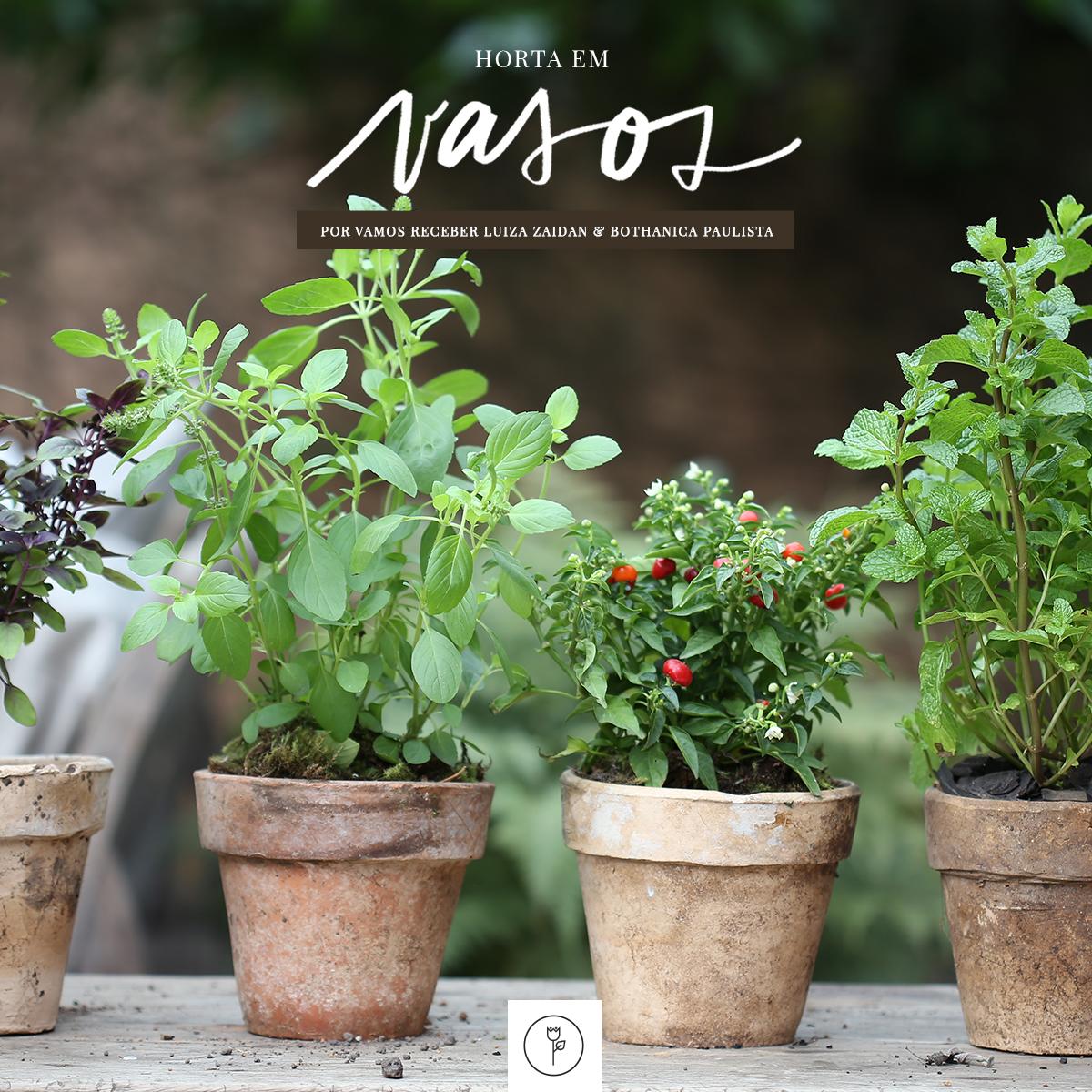 horta em vaso-banner