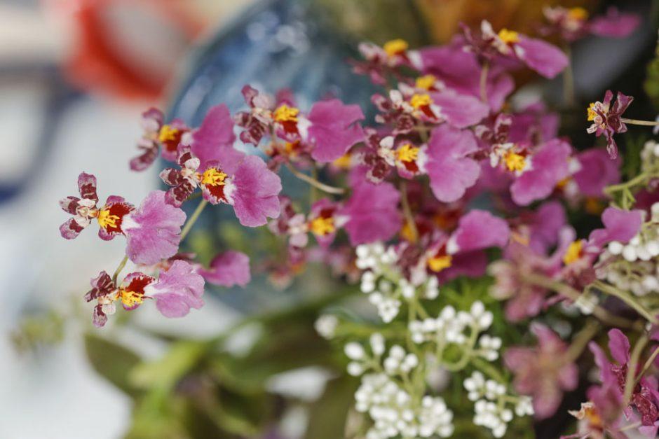 flores para cafe da manha