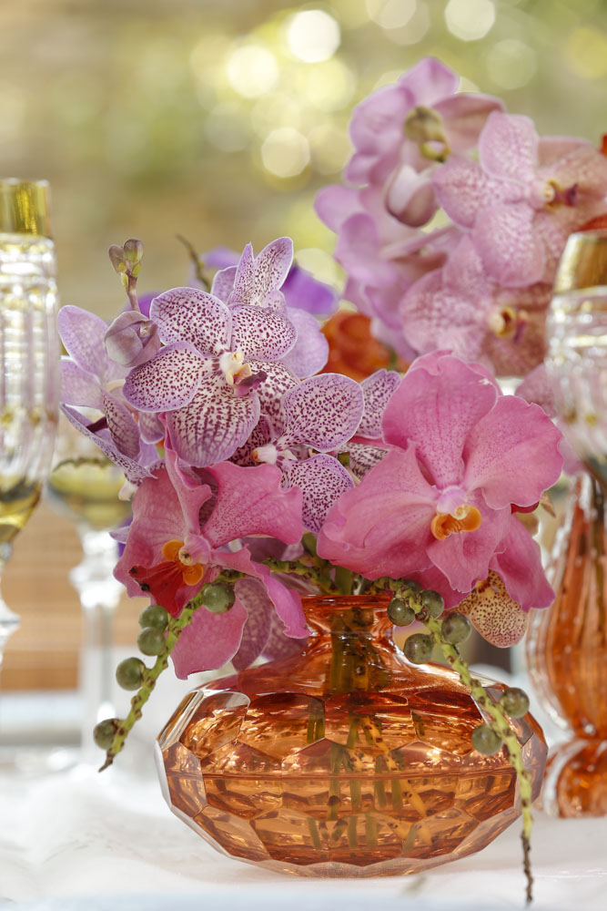 arranjo floral de orquideas vanda da Milplantas