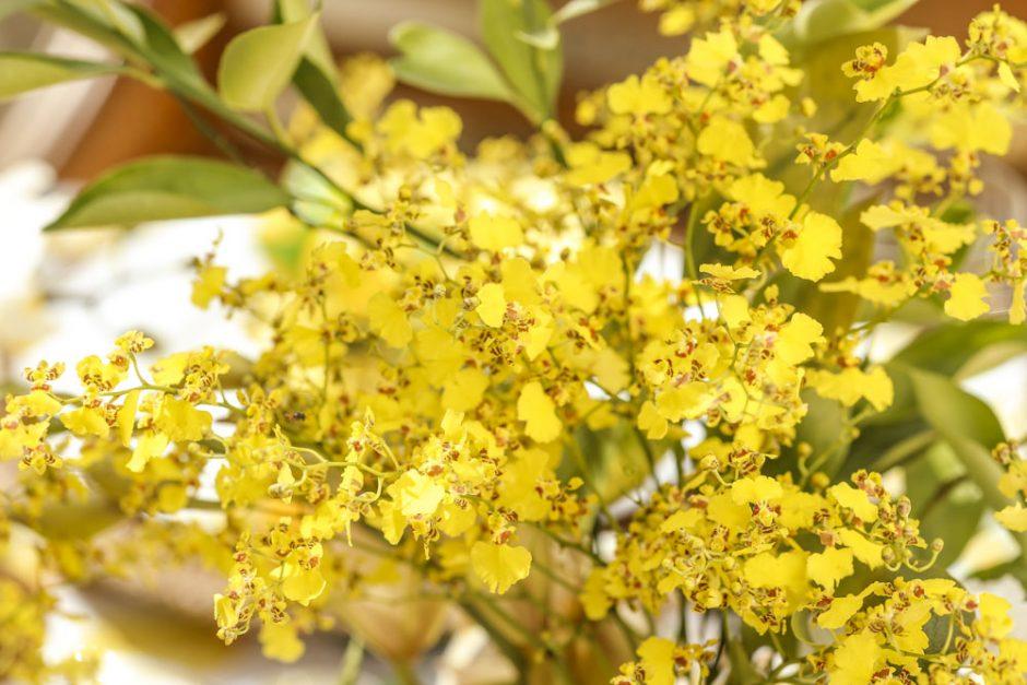 flores amarelas para centro de mesa