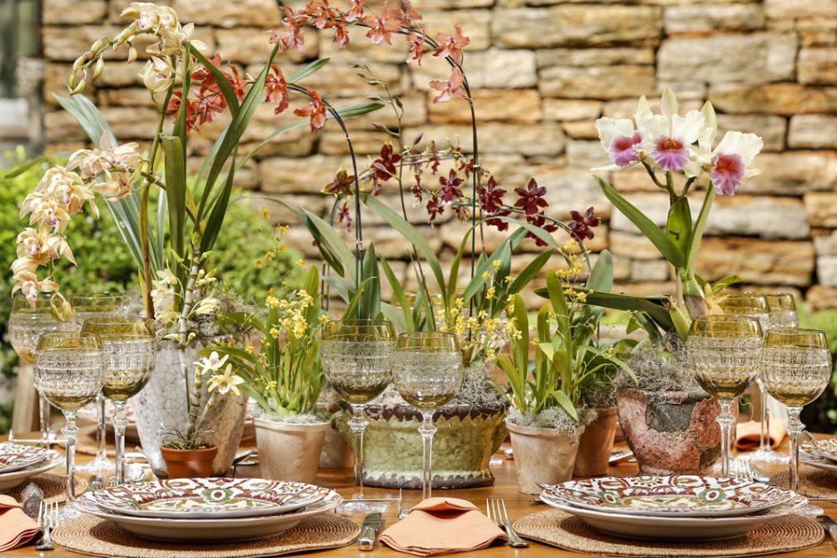 orquídeas cymbindium pendente