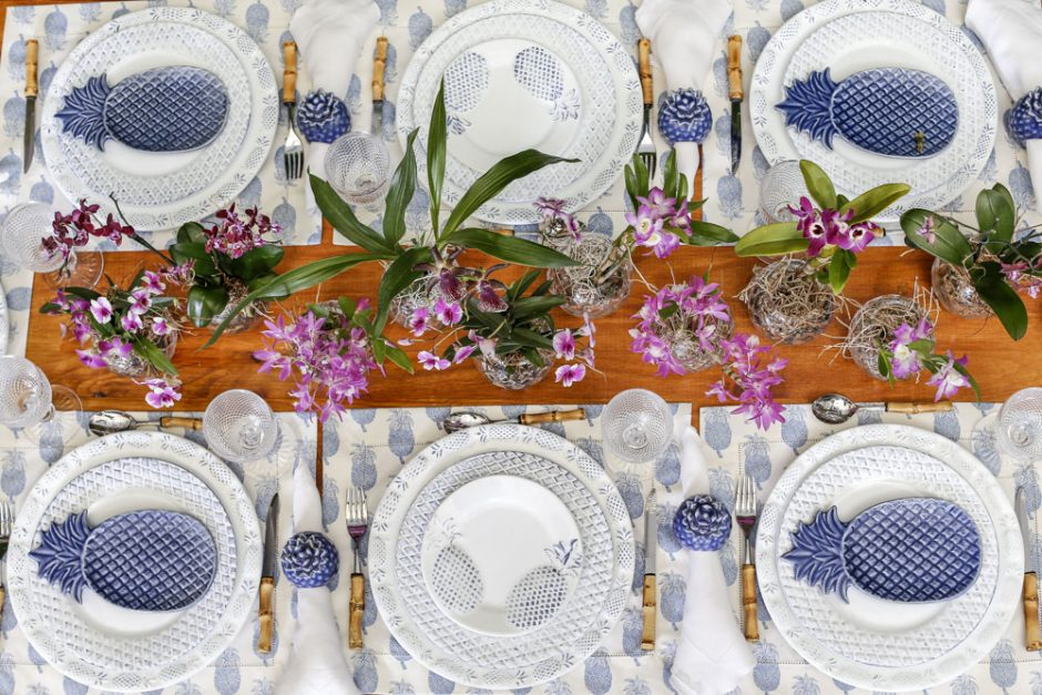 piquenique azul e branco