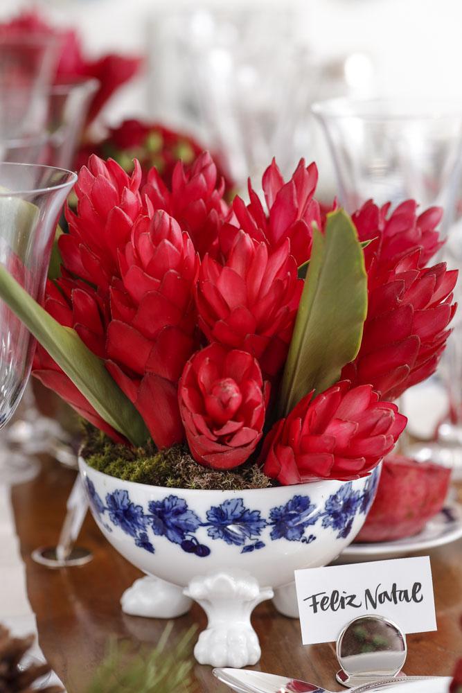 flores vermelhas milplantas