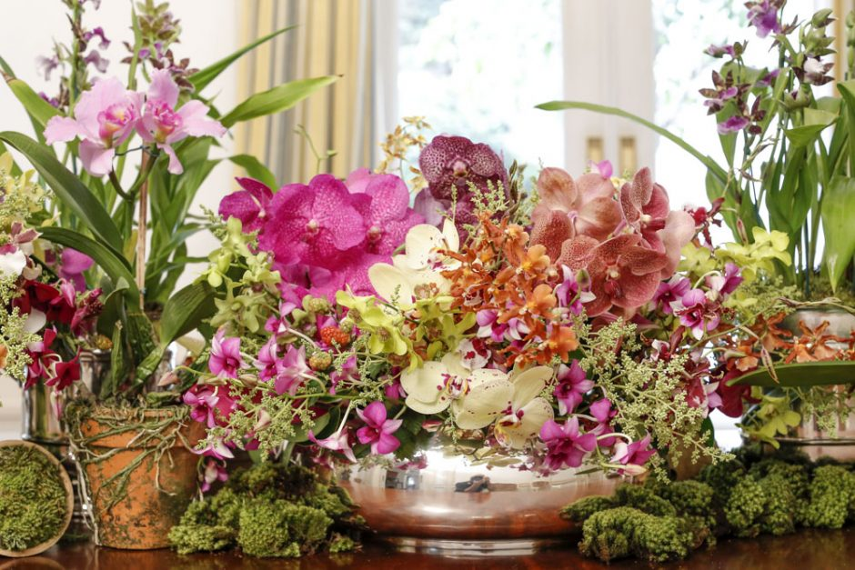 orquídeas em vaso de prata