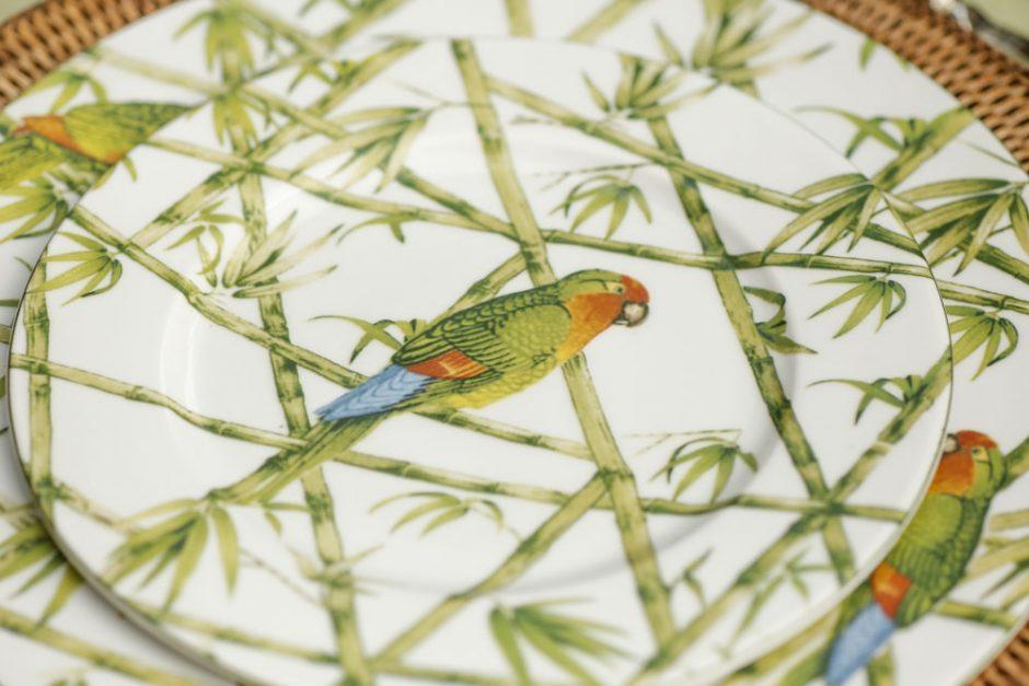 estampa de papagaio cecilia dale