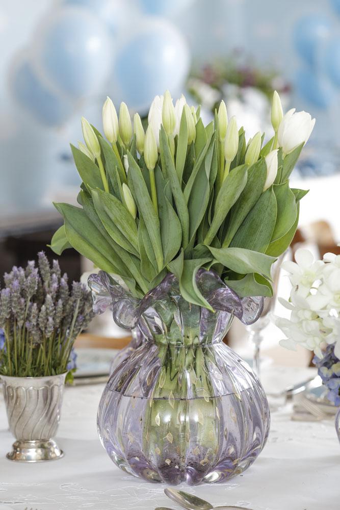 tulipas brancas
