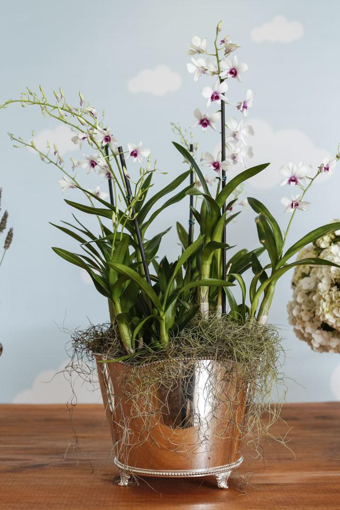 flores em vaso de prata
