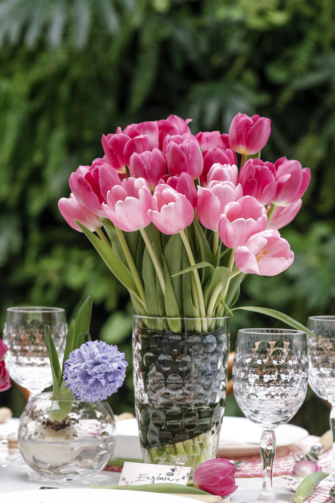 tulipas rosas milplantas