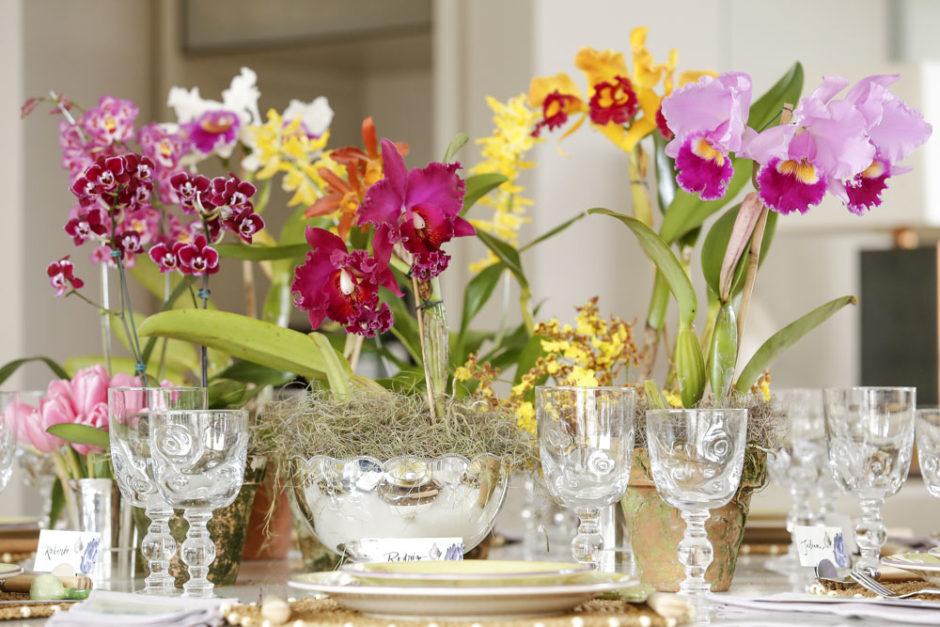 arranjos de orquideas da Milplantas