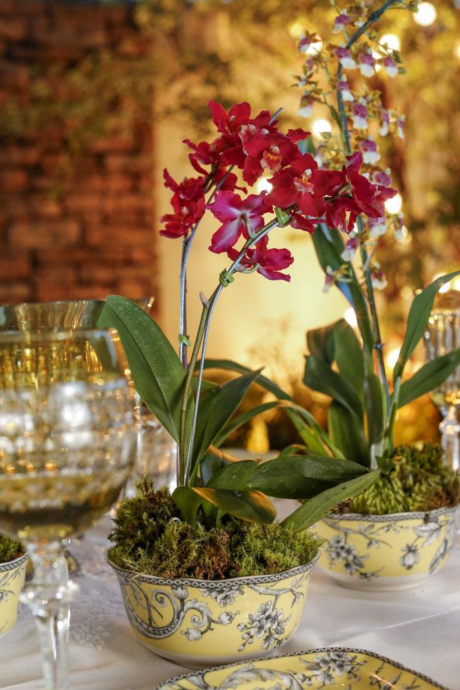 flores em bowls