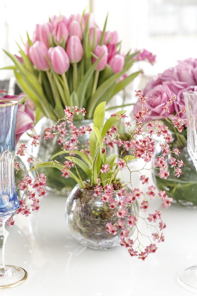 vasos de cristal Tania Bulhões com mini orquídeas