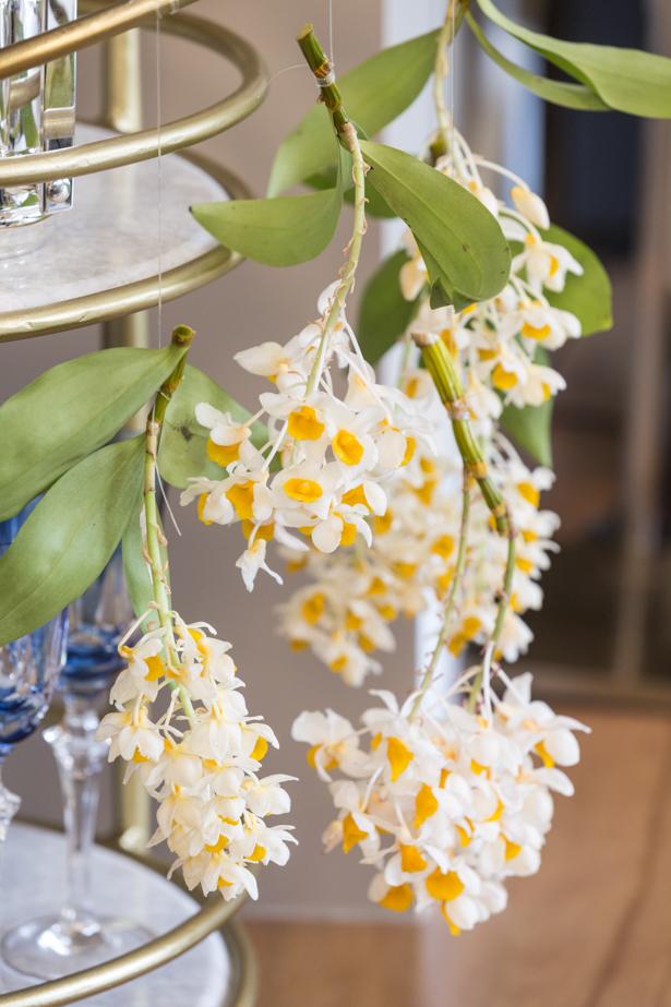 orquídeas para decorar uma festa