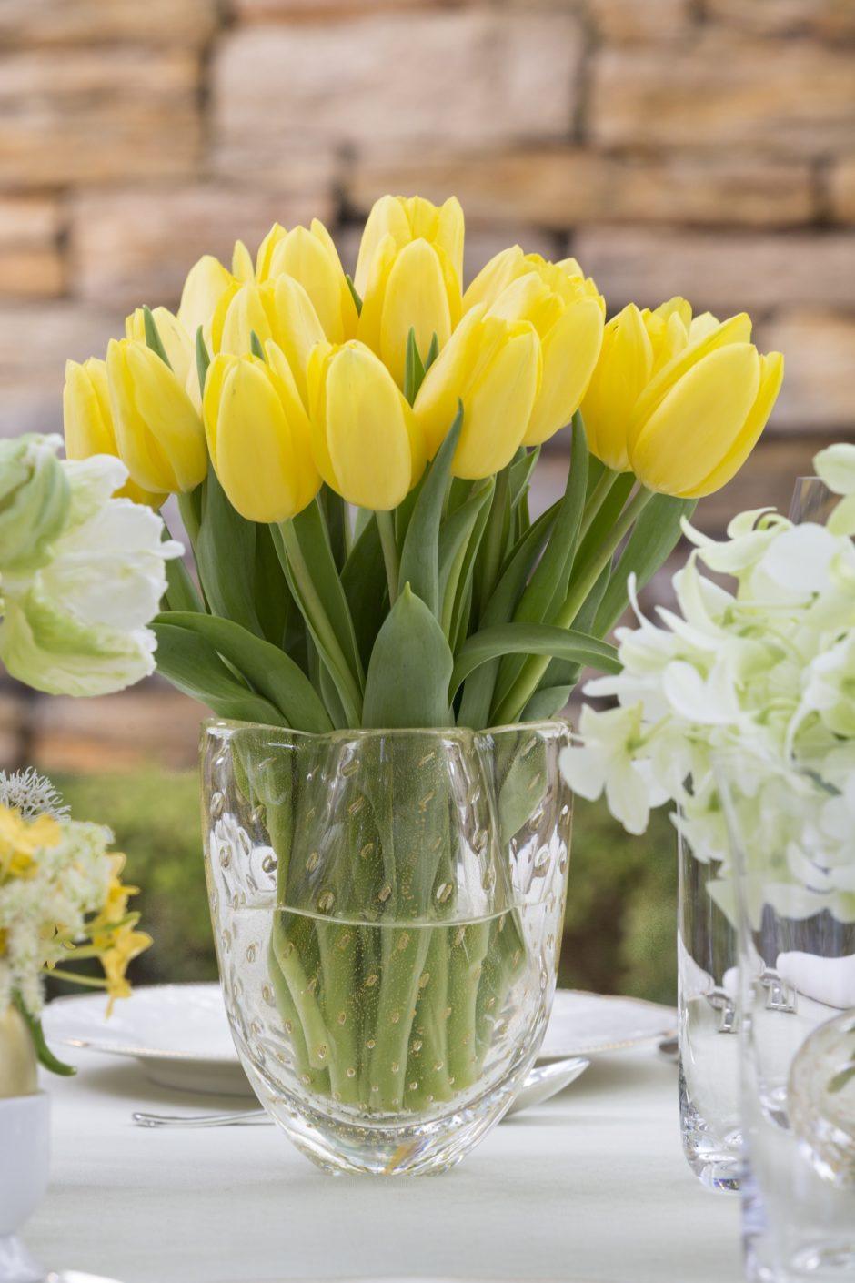 tulipas amarelas em vasos de cristal cá d'oro